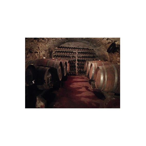 Lote de Vinos la Baronia